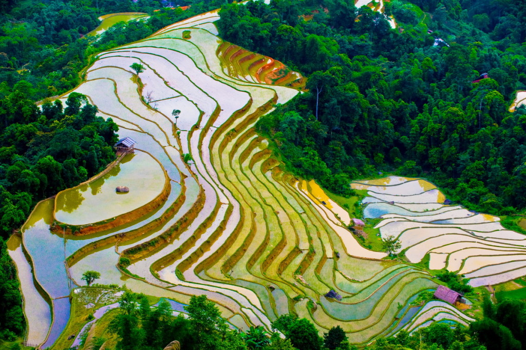 sapa terraces 3